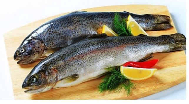 خواص ماهی قزل آلا