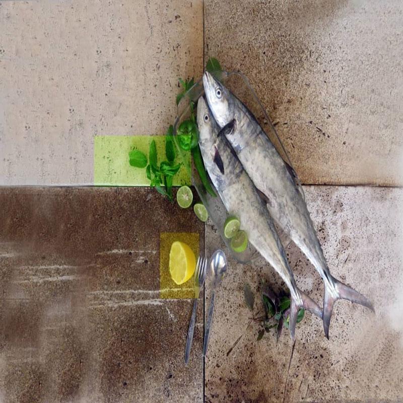شناخت ماهی شیر