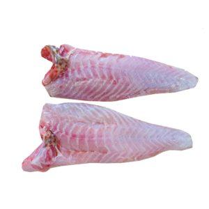 خرید فیله ماهی هامور