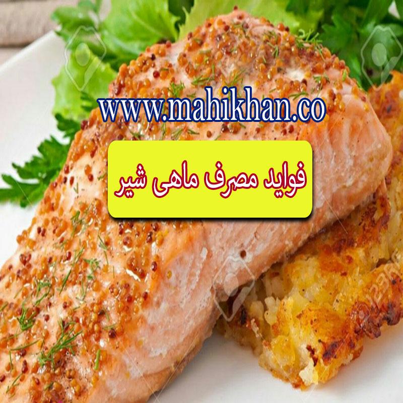 فواید ماهی شیر