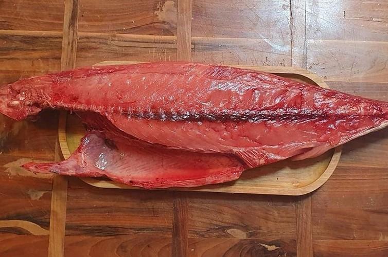 پخت ماهی هوور