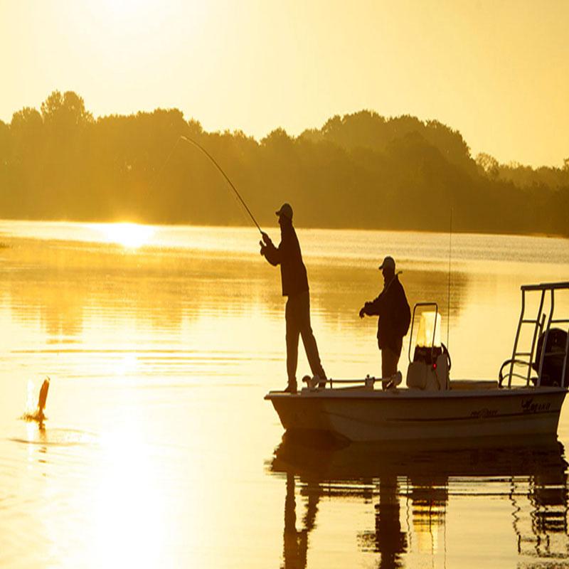 انواع روش های ماهیگیری