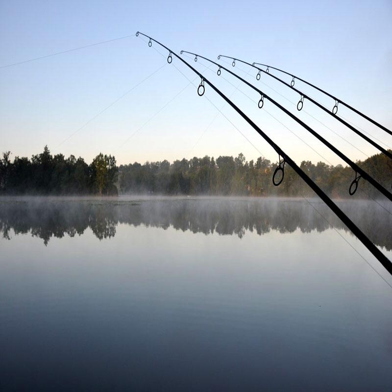 راهنمای خرید چوب ماهیگیری
